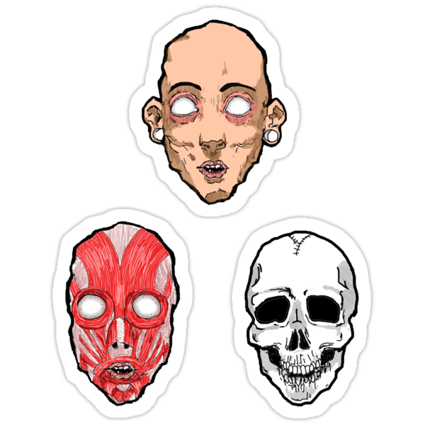 face, muscle, skull by zombieminds