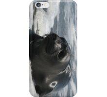 Marine Mammal On Watch iPhone Case/Skin