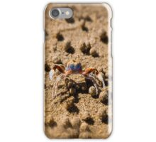Sand Crab with his boulders on Australian Beach iPhone Case/Skin