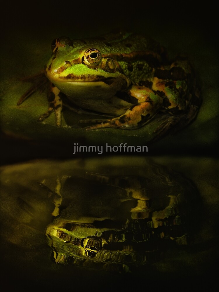 Reflection by jimmy hoffman