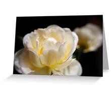 Cheerful rose Greeting Card