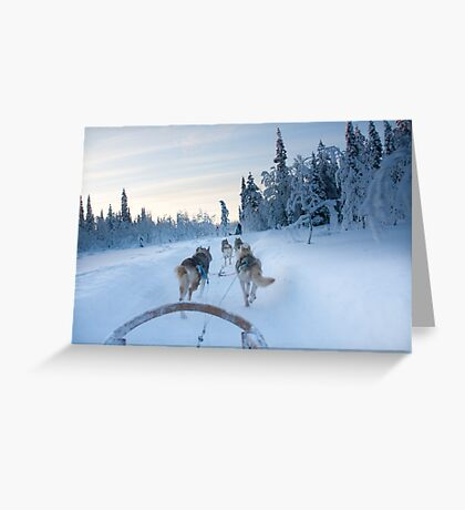 Husky Sledge, Lapland Greeting Card