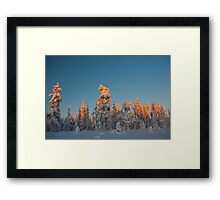 Lapland sunset Framed Print