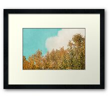 Cloud and Birches Framed Print