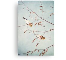 Goldfinch Gymnasts  ~ Canvas Print