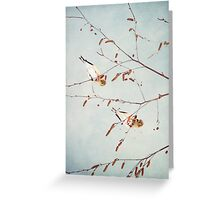 Goldfinch Gymnasts  ~ Greeting Card