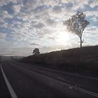 On the road to Bega by Tom McDonnell