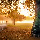 Misty Morning by Duncan Longden