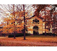 Blanket of Leaves Photographic Print
