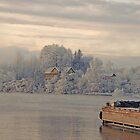 Norwegian Winter By Water by appfoto