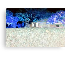 The neighbor's hedge Canvas Print