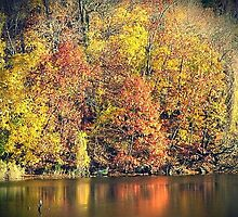 Autumn's Reflection by lilu1012