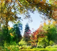Autumn Vista by Susan Savad