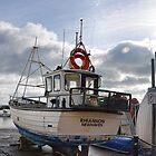 Rhiannon Ashore At Lyme by lynn carter