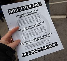 God Hates Figs by Avi Schwab