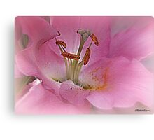 Stay As Sweet As You Are Canvas Print