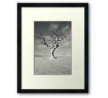 January 2013 Framed Print