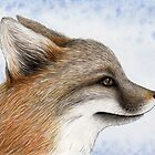 Grey Fox by Mariya Olshevska
