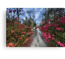 Cypress Gardens - Spring Canvas Print