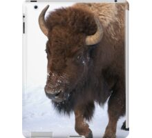 Bison on the move iPad Case/Skin