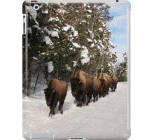 Yellowstone Traffic Jam iPad Case/Skin
