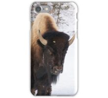 Bison Face iPhone Case/Skin