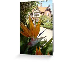 'Paradise @ Tay Creggan' Tay Creggan Hawthorn Victoria, Australia Greeting Card