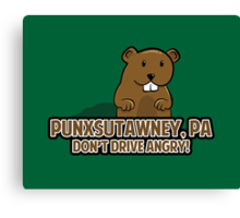 Don't Drive Angry Canvas Print