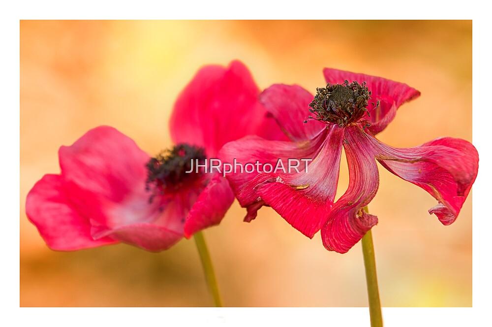 The Last Days by JHRphotoART