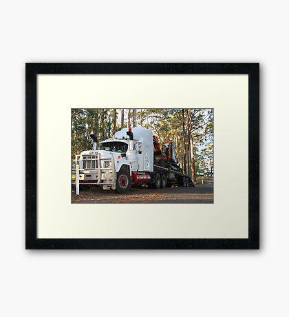 MACK In The Bush! Framed Print