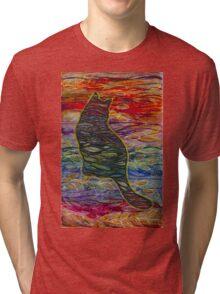 Ocean Kitty Sunset Tri-blend T-Shirt