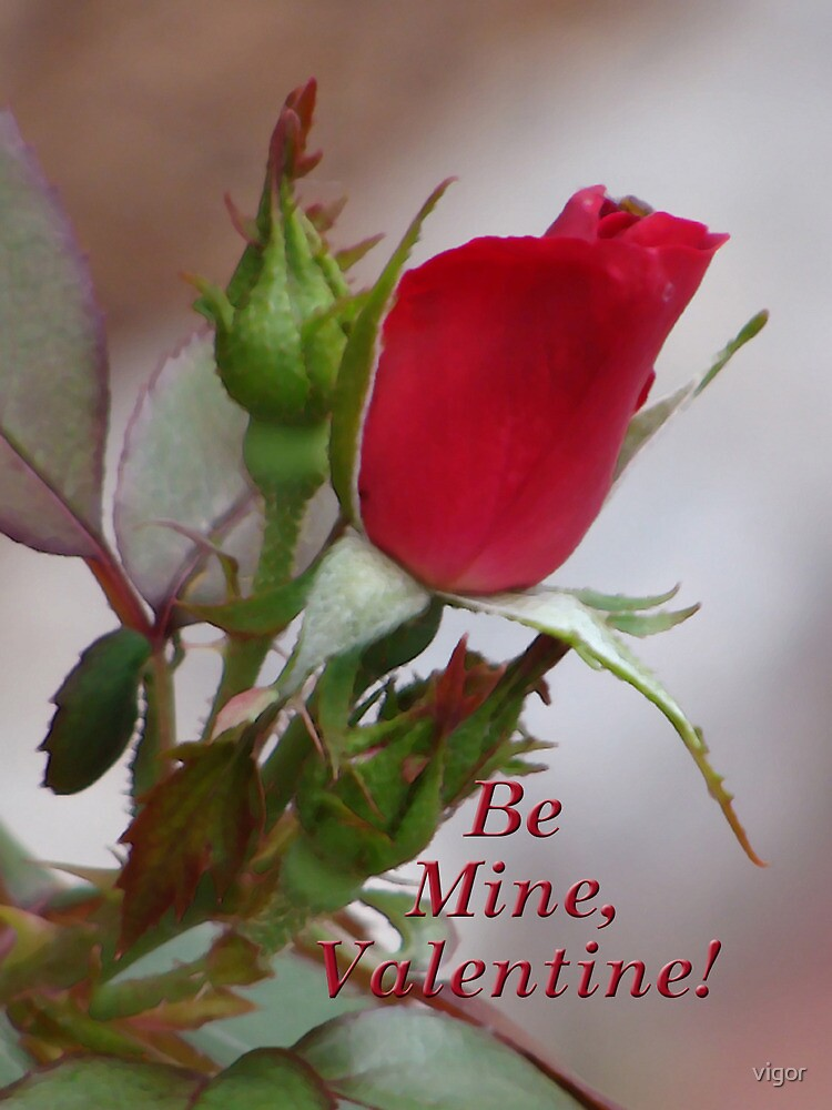 Be mine by vigor