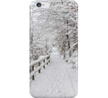 The winter lane iPhone Case/Skin