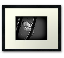 A Strong Attachment Framed Print