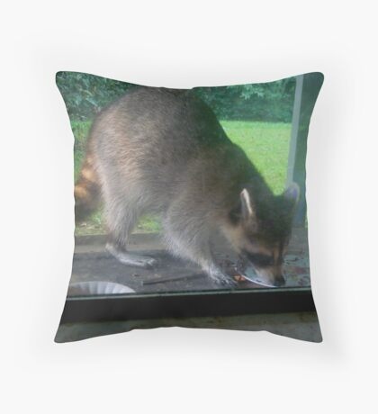 Little Coon, the Occasional Visitor Throw Pillow