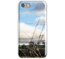 Flying in Formation iPhone Case/Skin