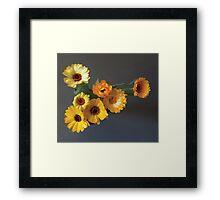 Gerbera bouquet Framed Print