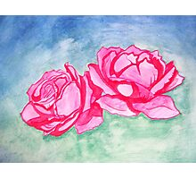 Roses Photographic Print