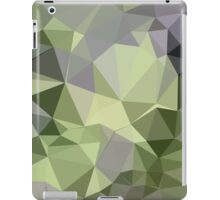 Asparagus Green Abstract Low Polygon Background iPad Case/Skin