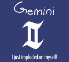 More Gemini by Janelle Tarnopolski