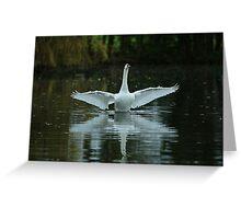 Swan Flight Greeting Card