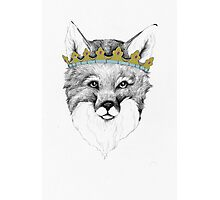 Crowned Fox Photographic Print
