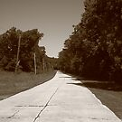 Missouri Route 66, 2012, Sepia. by Frank Romeo