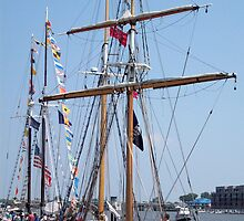 STV Pathfinder - Bay City Tall Ship Celebration (2010) by Francis LaLonde