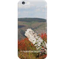 dead tree & paintbrush wildflowers on Johnston's Ridge iPhone Case/Skin