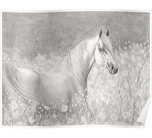 Spring Horse. Poster