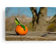 orange! Canvas Print