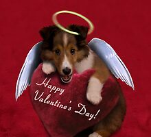 Valentine's Day Sheltie Puppy by jkartlife