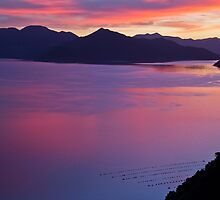 Sunset Marlborough Sounds by trevallyphotos