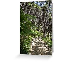 Manuka trees and fern with winding road and shadow Greeting Card